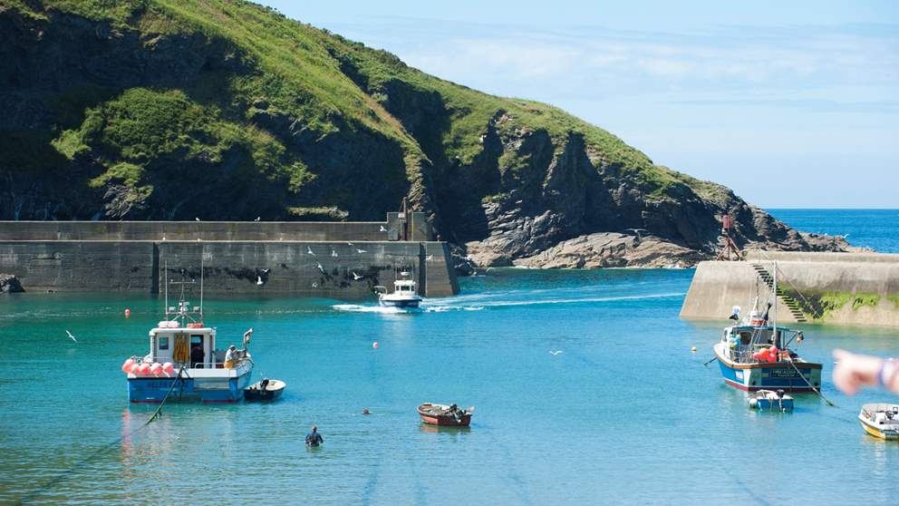 Set within such beautiful countryside on the north Cornish coast, there's plenty to do in and around Port Isaac