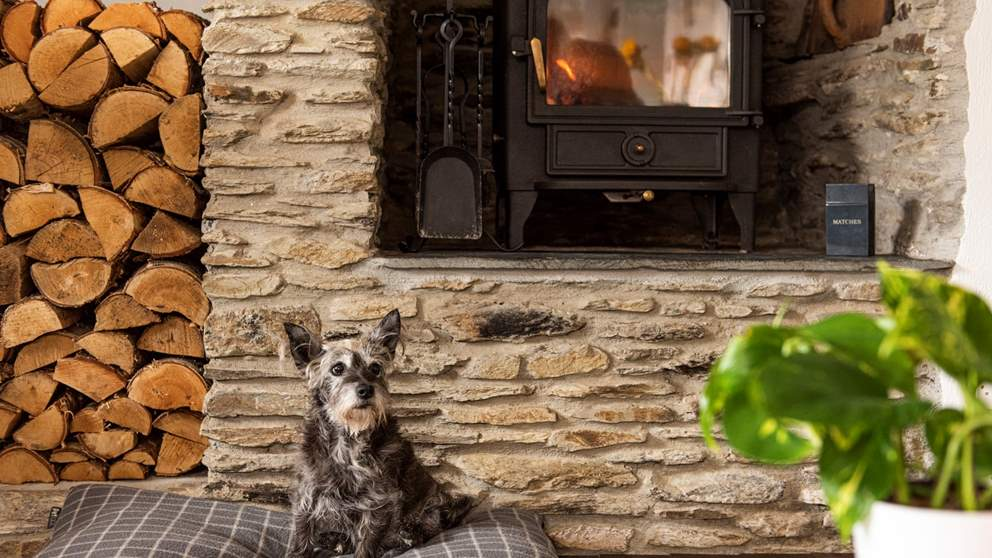 Four-legged friends are most welcome at Sophie's Cottage - and they'll adore the wood burner